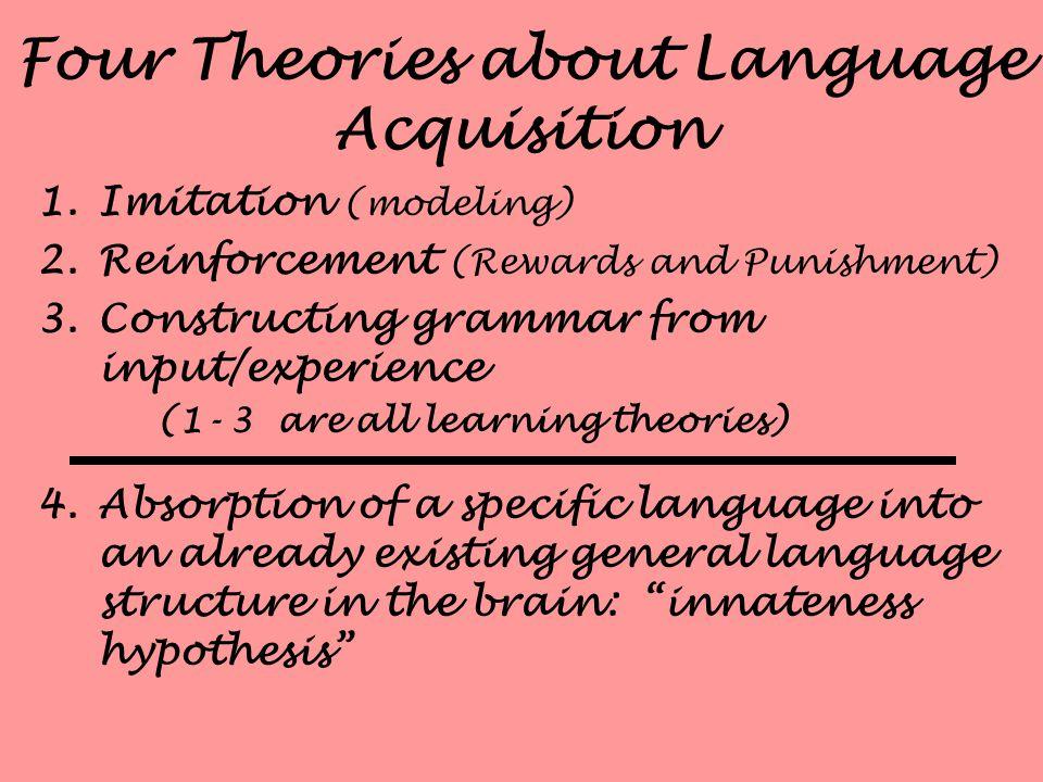 How Children Acquire Language
