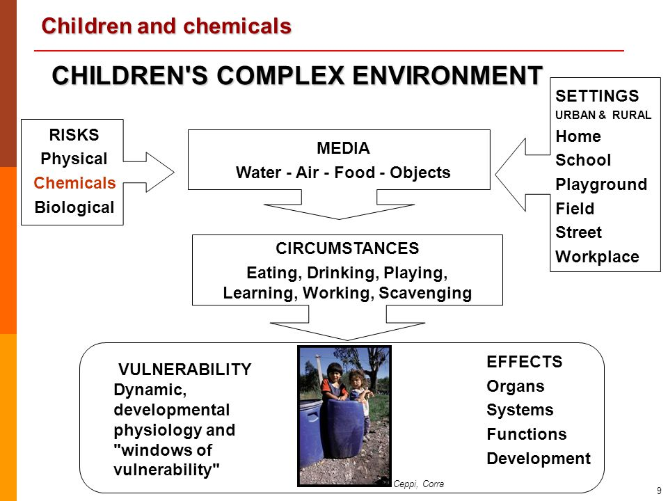 Children and chemicals 9 EFFECTS Organs Systems Functions Development RISKS Physical Chemicals Biological MEDIA Water - Air - Food - Objects SETTINGS