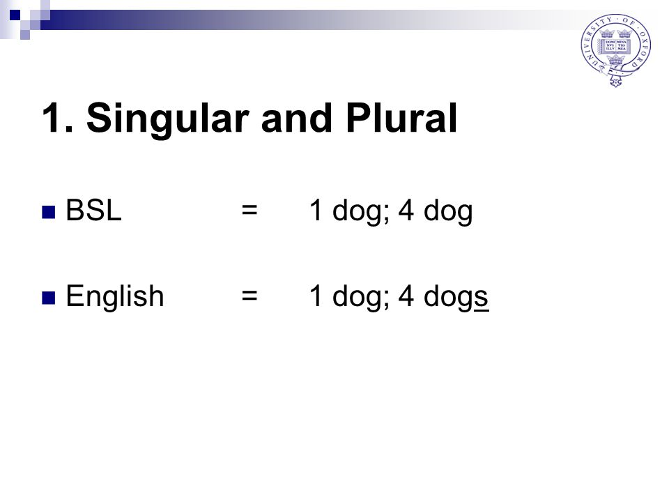 1. Singular and Plural BSL = 1 dog; 4 dog English = 1 dog; 4 dogs