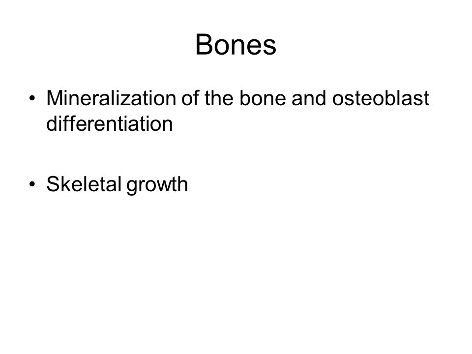 Bones Mineralization of the bone and osteoblast differentiation Skeletal growth