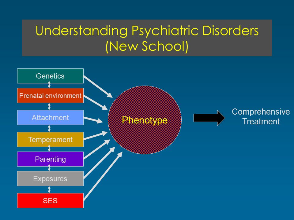 Understanding Psychiatric Disorders (New School) Genetics Prenatal environment Attachment Temperament Parenting Exposures Phenotype SES Comprehensive