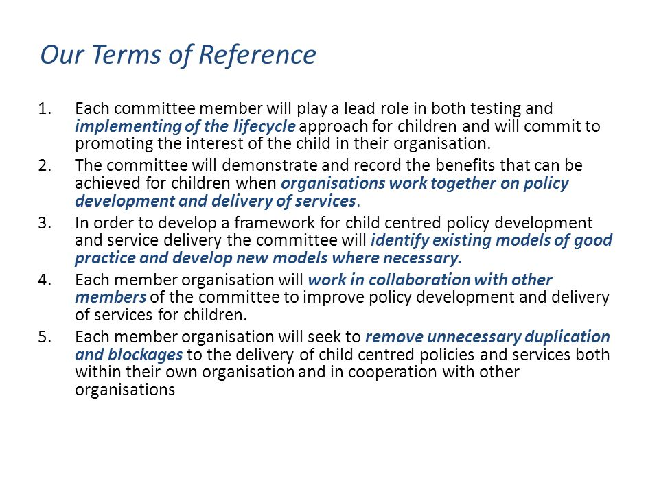 Our Terms of Reference 1.Each committee member will play a lead role in both testing and implementing of the lifecycle approach for children and will commit to promoting the interest of the child in their organisation.