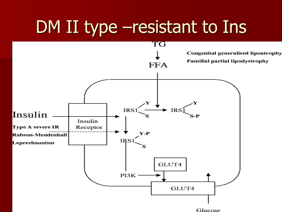 DM II type –resistant to Ins