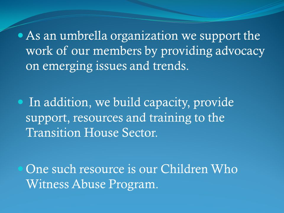 As an umbrella organization we support the work of our members by providing advocacy on emerging issues and trends.
