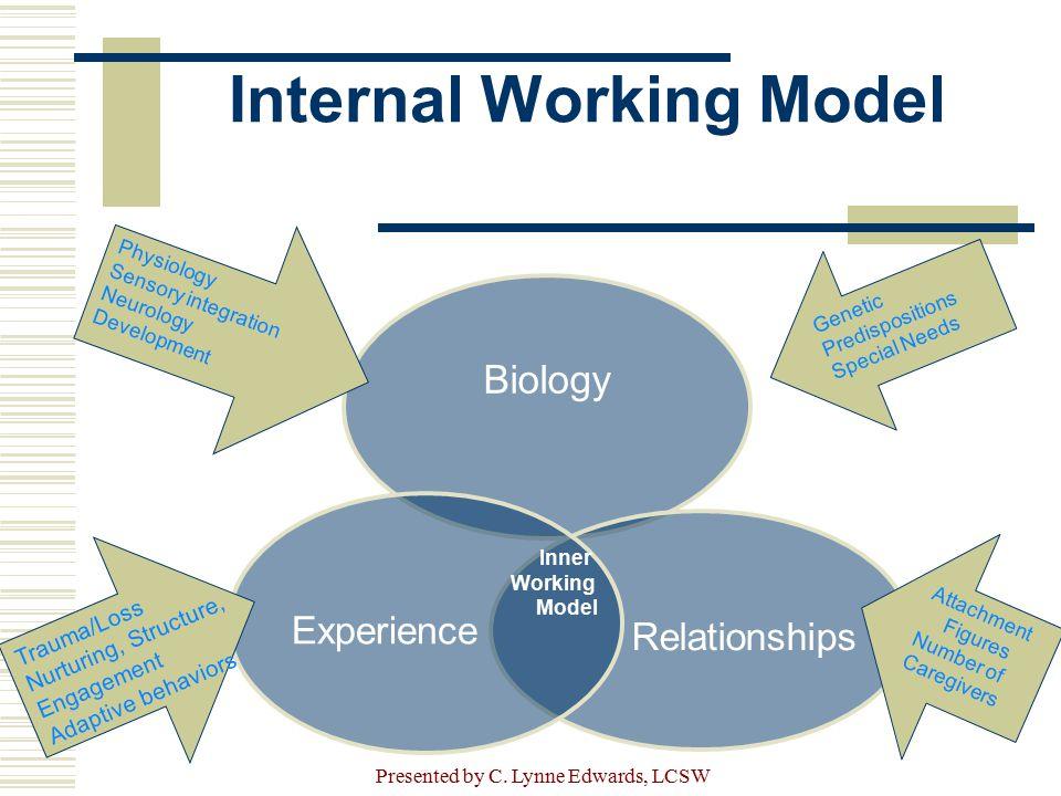 Internal Working Model Biology Relationships Experience Inner Working Model Physiology Sensory integration Neurology Development Trauma/Loss Nurturing