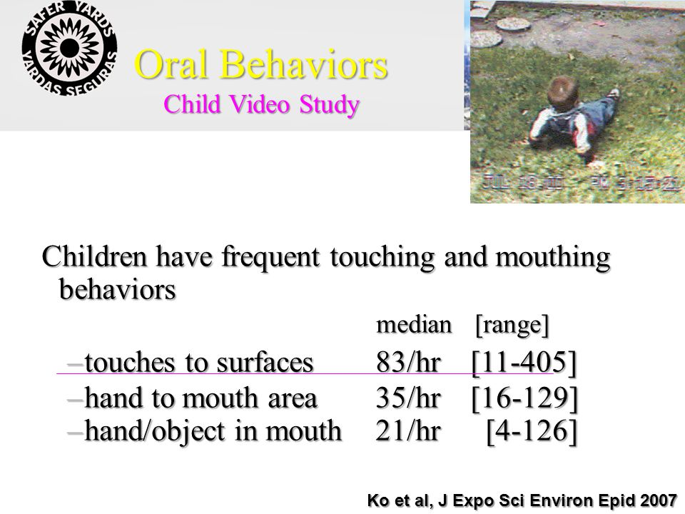 Oral Behaviors Child Video Study Children have frequent touching and mouthing behaviors median [range] median [range] –touches to surfaces 83/hr [11-405] –hand to mouth area 35/hr [16-129] –hand/object in mouth 21/hr [4-126] Ko et al, J Expo Sci Environ Epid 2007