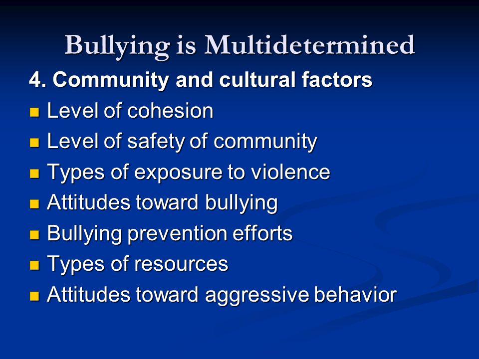 Bullying is Multidetermined 4.