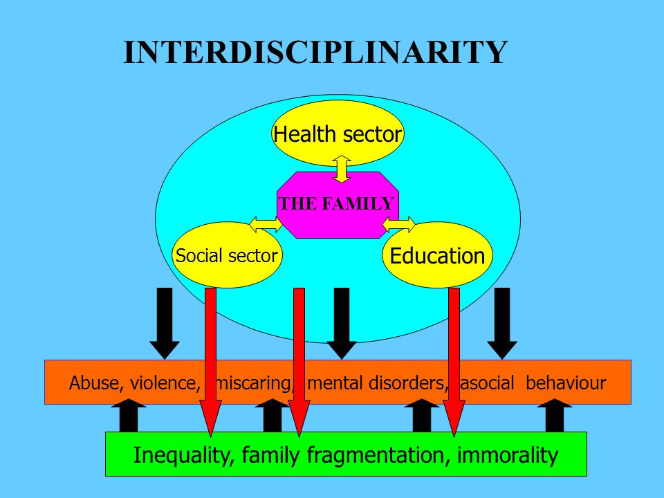 Health sector Education Social sector THE FAMILY INTERDISCIPLINARITY Inequality, family fragmentation, immorality Abuse, violence, miscaring, mental disorders, asocial behaviour