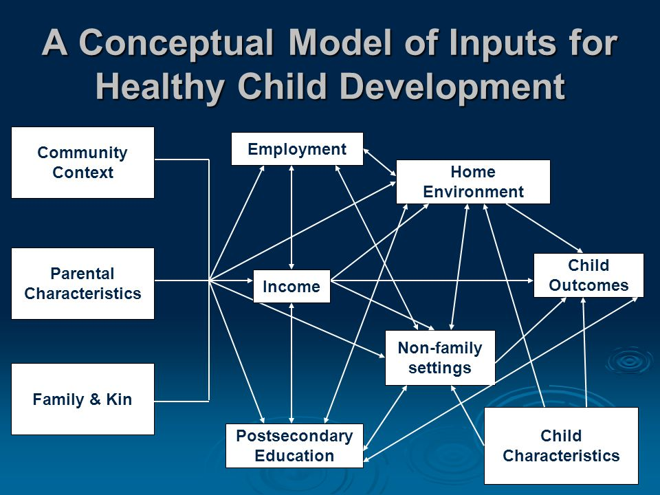 A Conceptual Model of Inputs for Healthy Child Development Family & Kin Postsecondary Education Home Environment Non-family settings Child Outcomes Child Characteristics Parental Characteristics Community Context Income Employment