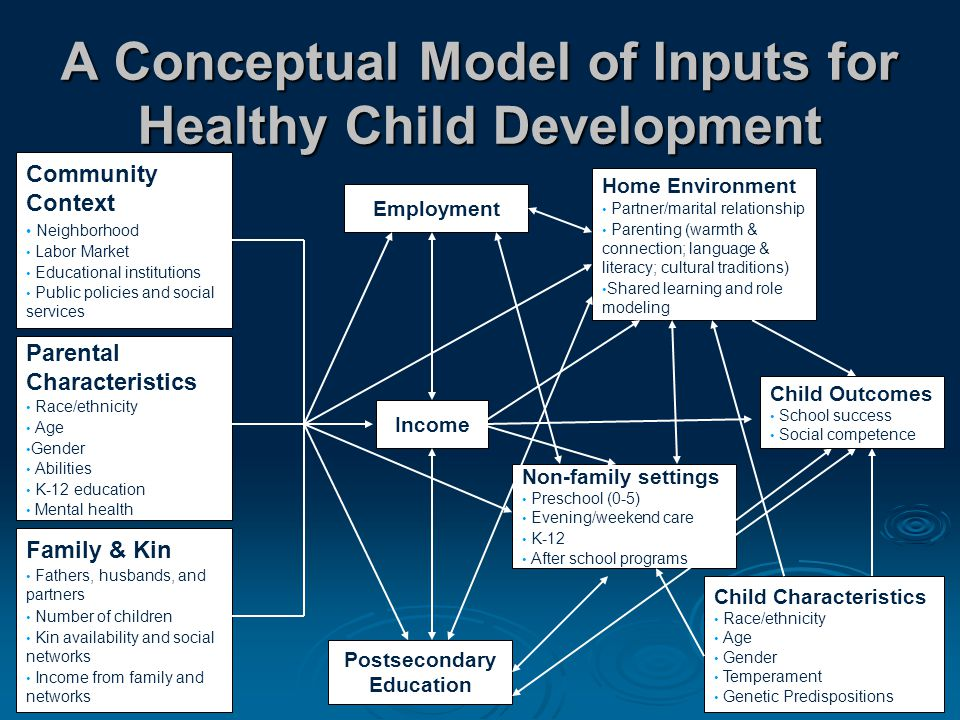 A Conceptual Model of Inputs for Healthy Child Development Family & Kin Fathers, husbands, and partners Number of children Kin availability and social networks Income from family and networks Parental Characteristics Race/ethnicity Age Gender Abilities K-12 education Mental health Community Context Neighborhood Labor Market Educational institutions Public policies and social services Income Employment Postsecondary Education Home Environment Partner/marital relationship Parenting (warmth & connection; language & literacy; cultural traditions) Shared learning and role modeling Non-family settings Preschool (0-5) Evening/weekend care K-12 After school programs Child Characteristics Race/ethnicity Age Gender Temperament Genetic Predispositions Child Outcomes School success Social competence