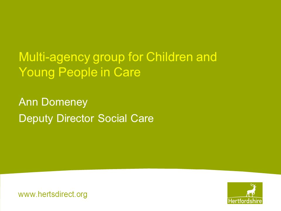 www.hertsdirect.org Multi-agency group for Children and Young People in Care Ann Domeney Deputy Director Social Care