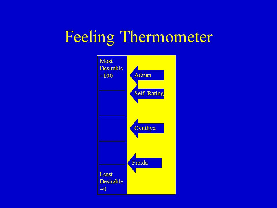 Feeling Thermometer Most Desirable =100 Least Desirable =0 Self RatingCynthya Adrian Freida