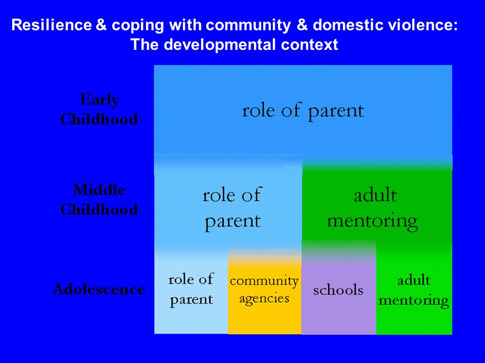 Resilience & coping with community & domestic violence: The developmental context
