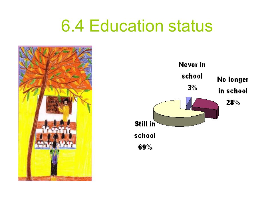 6.4 Education status