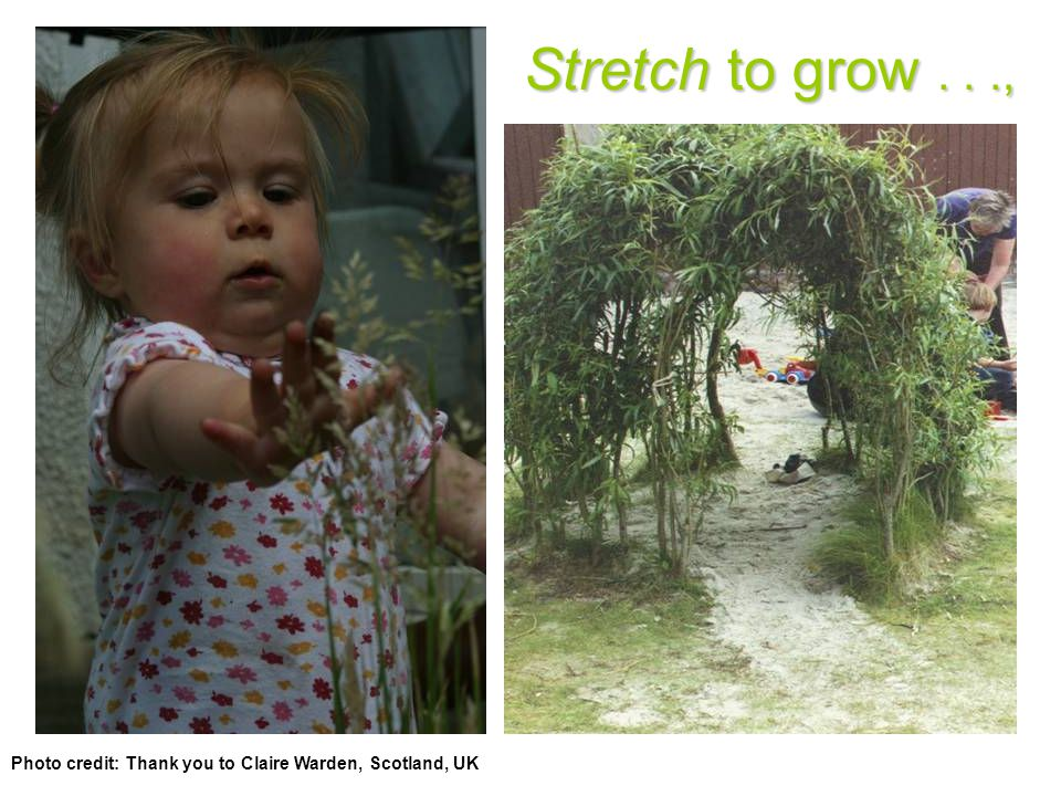Stretch to grow..., Photo credit: Thank you to Claire Warden, Scotland, UK