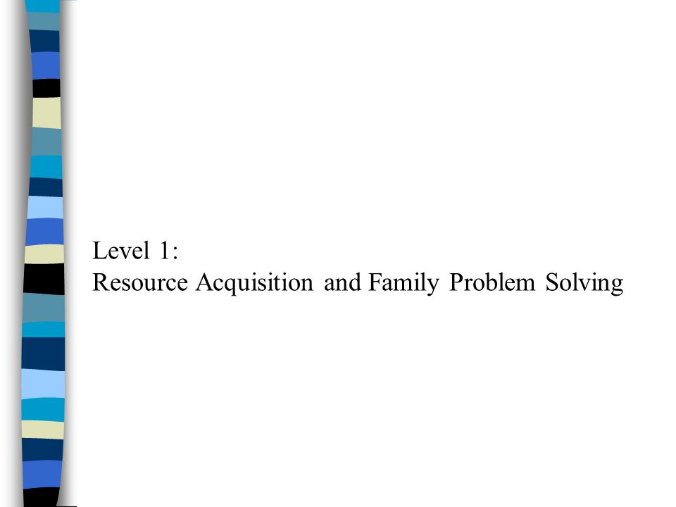 Level 1: Resource Acquisition and Family Problem Solving