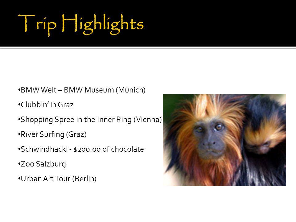 BMW Welt – BMW Museum (Munich) Clubbin' in Graz Shopping Spree in the Inner Ring (Vienna) River Surfing (Graz) Schwindhackl - $200.00 of chocolate Zoo Salzburg Urban Art Tour (Berlin)