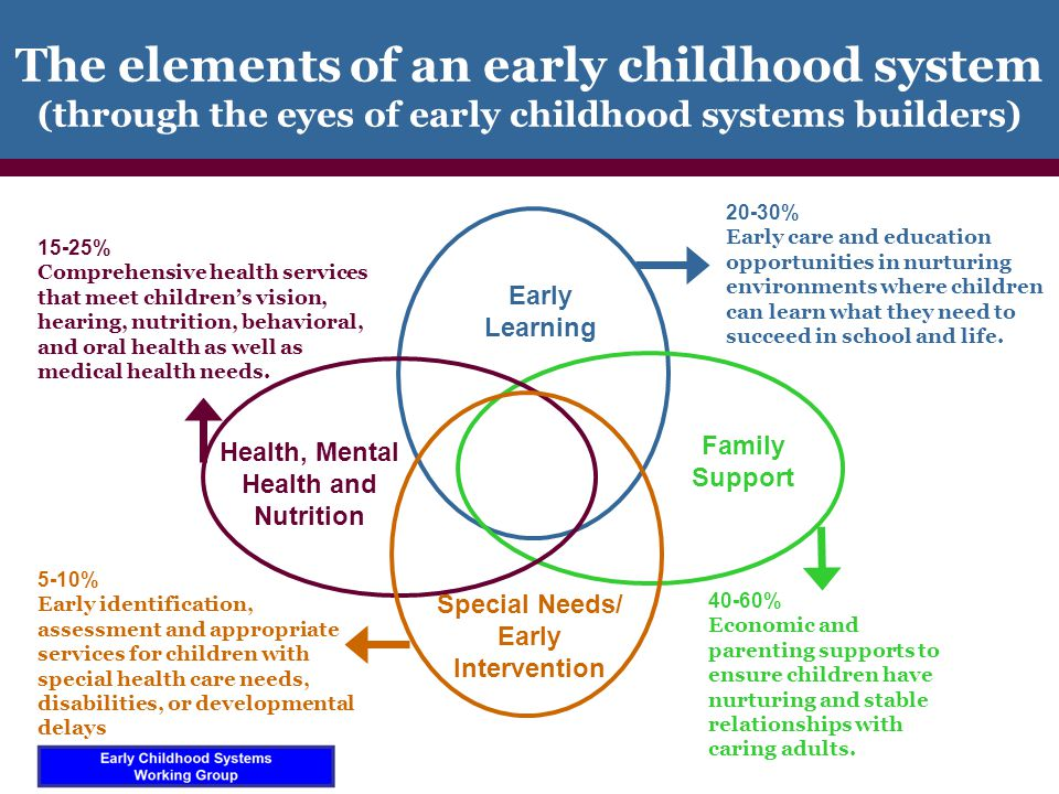 Different literatures: Similar foci Medical Terms –life-course model –patient-centered care –anticipatory guidance –social determinants –developmental screening/surveillance – child health outcomes Early Childhood Terms –ecological, whole child –family-centered services –family engagement –risk/protective factors –Early identification and response –domains of school readiness