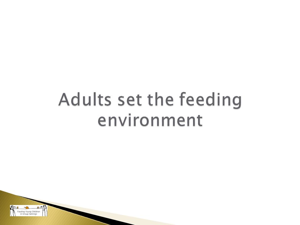 Adults set the feeding environment