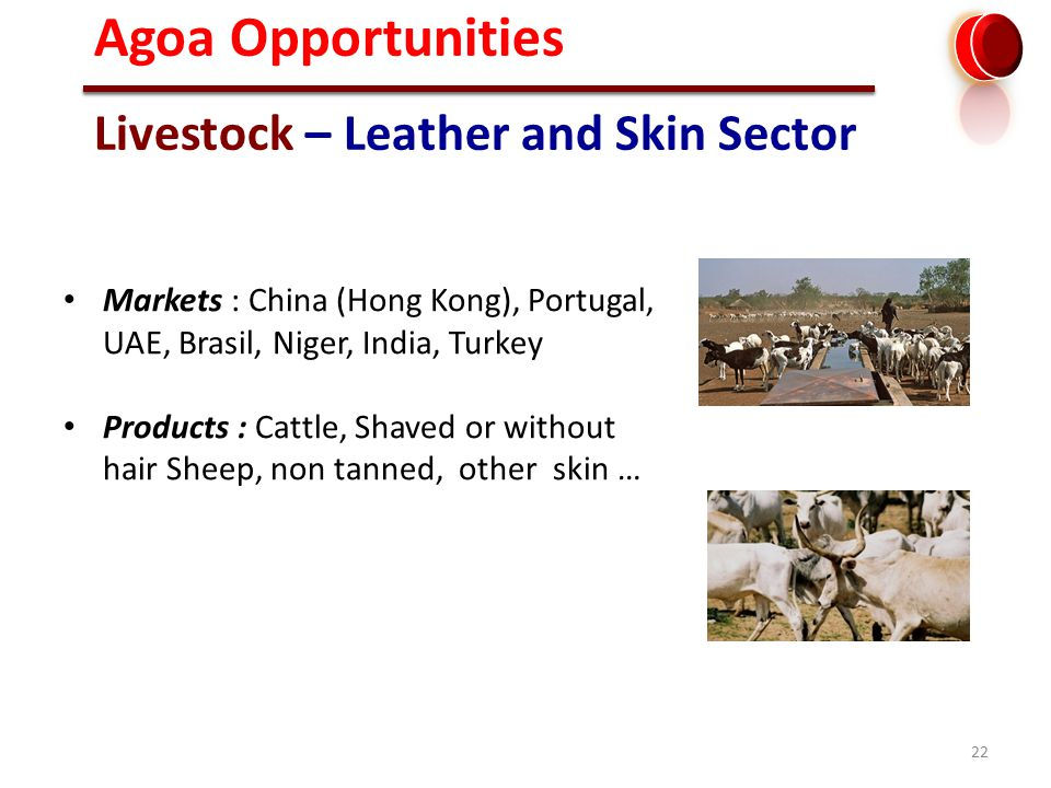 22 Livestock – Leather and Skin Sector Markets : China (Hong Kong), Portugal, UAE, Brasil, Niger, India, Turkey Products : Cattle, Shaved or without hair Sheep, non tanned, other skin … Agoa Opportunities