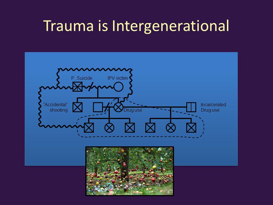 Trauma is Intergenerational P, SuicideIPV victim Drug use Accidental shooting Incarcerated Drug use