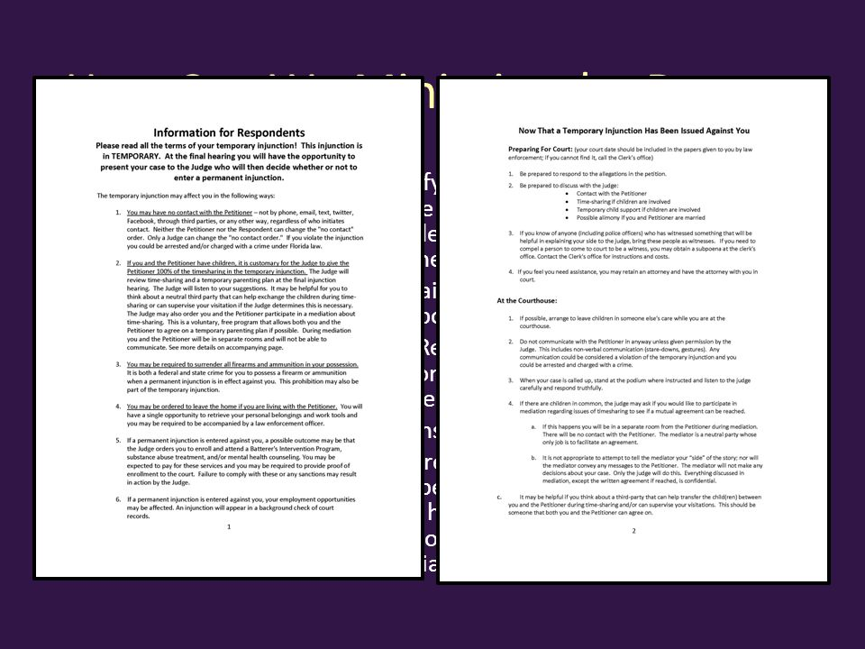 How Can We Minimize the Danger Demystify/Empower/De-escalate: Brochure or handout that is served on Respondent with temporary order or order setting hearing: – Explains that the temporary order is temporary – Tell Respondent he/she will get the opportunity to present evidence before Judge makes a final decision – Warns about consequence of violations – Assures Respondent that timesharing will be addressed by the Judge at the final hearing and prepares the Respondent for the possibility of mediation.