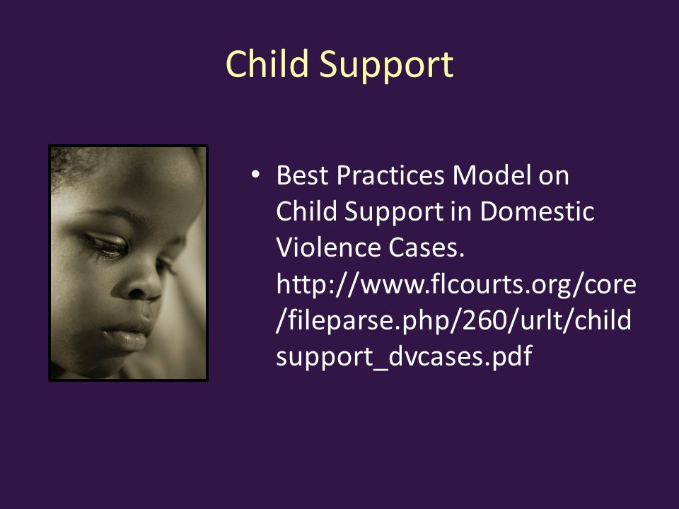 Child Support Best Practices Model on Child Support in Domestic Violence Cases.