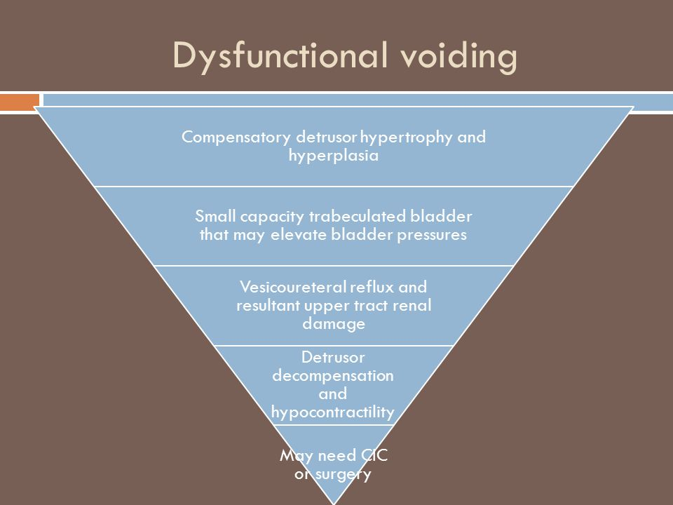Dysfunctional voiding Compensatory detrusor hypertrophy and hyperplasia Small capacity trabeculated bladder that may elevate bladder pressures Vesicou