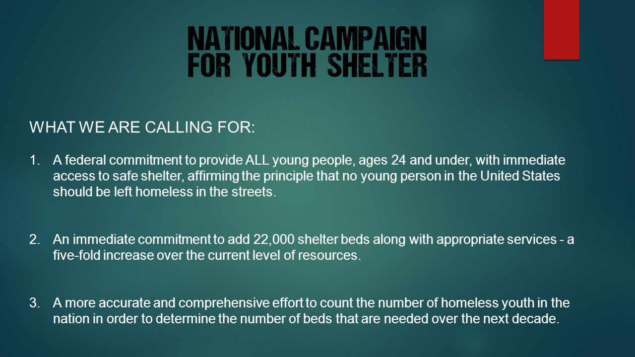 WHAT WE ARE CALLING FOR: 1.A federal commitment to provide ALL young people, ages 24 and under, with immediate access to safe shelter, affirming the principle that no young person in the United States should be left homeless in the streets.