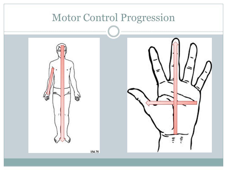 Motor Control Progression