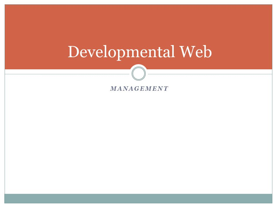 MANAGEMENT Developmental Web