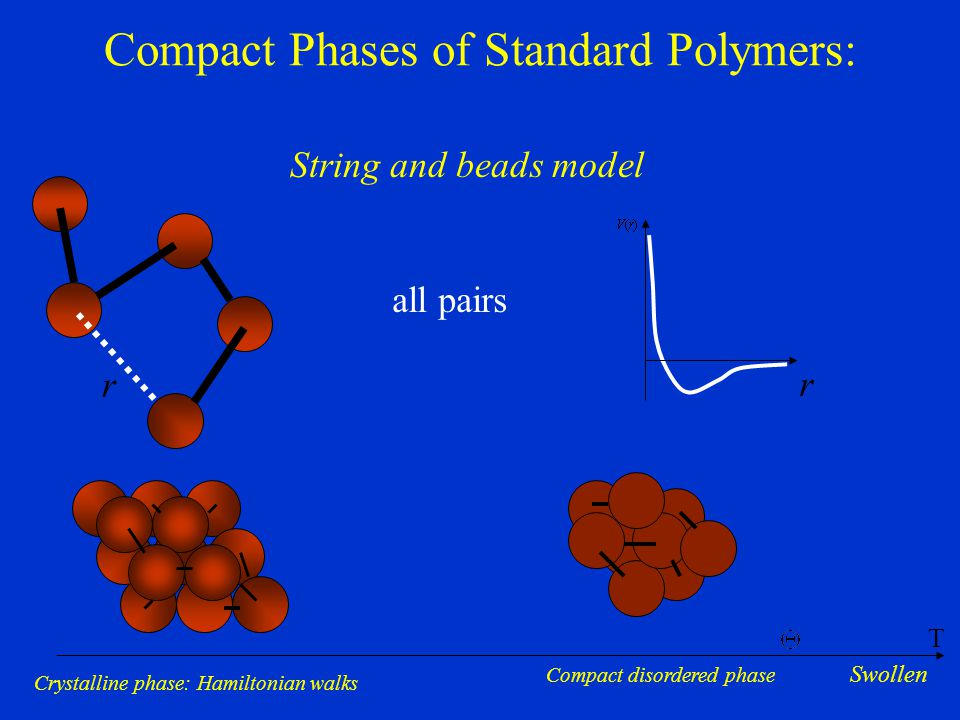 Compact Phases of Standard Polymers: String and beads model r r all pairs Crystalline phase: Hamiltonian walksCompact disordered phase T Swollen