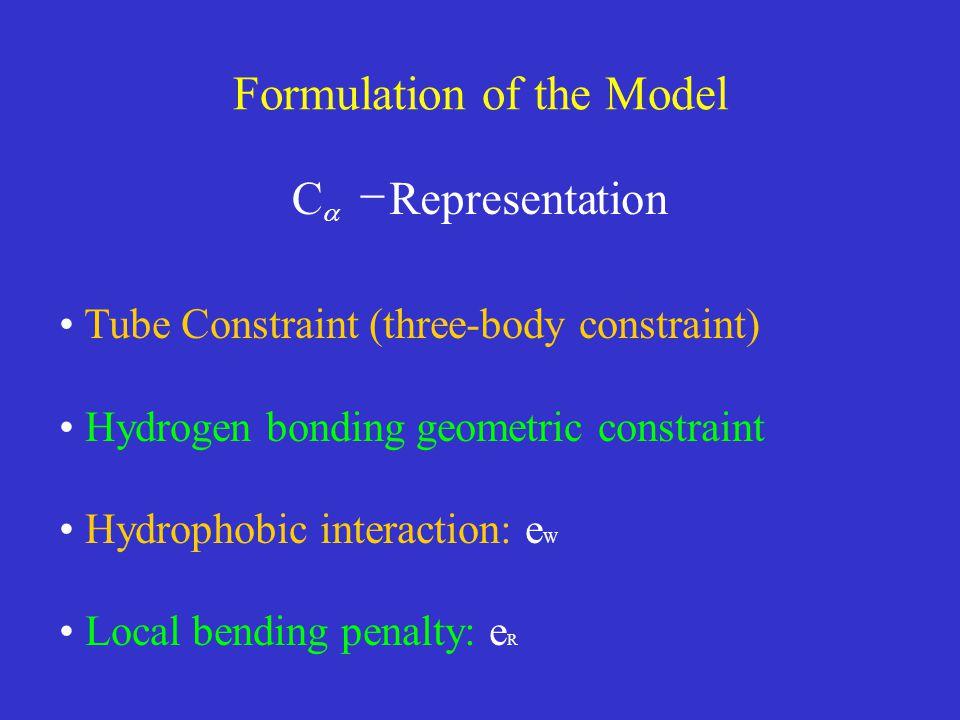 Formulation of the Model tionRepresenta C   Tube Constraint (three-body constraint) Hydrogen bonding geometric constraint Hydrophobic interaction: e W Local bending penalty: e R