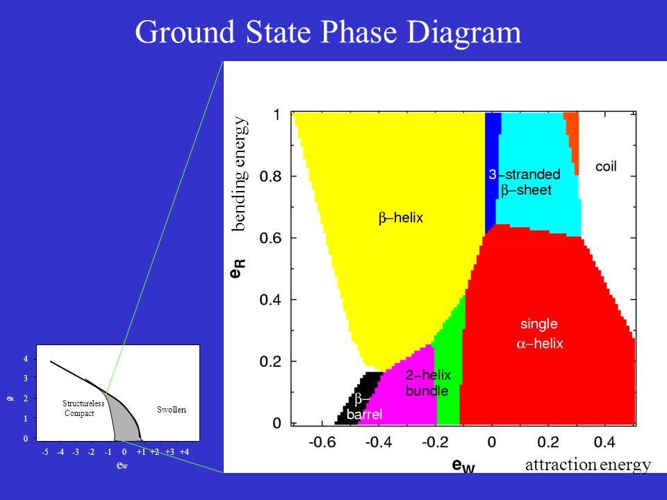 Ground State Phase Diagram -5 -4 -3 -2 -1 0 +1 +2 +3 +4 e W 4321043210 eReR Swollen Structureless Compact bending energy attraction energy