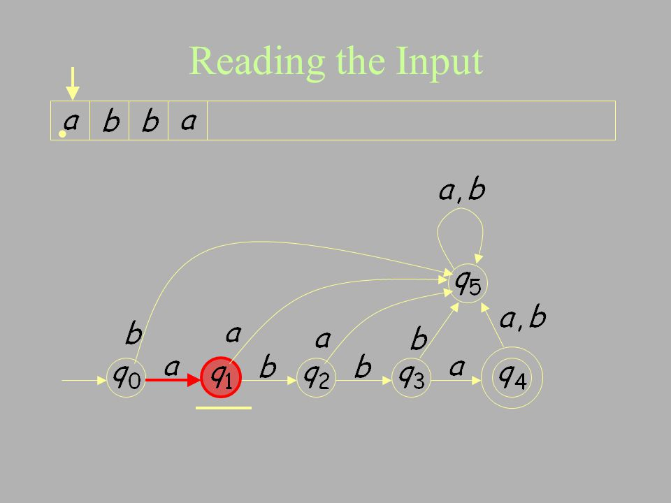 Reading the Input