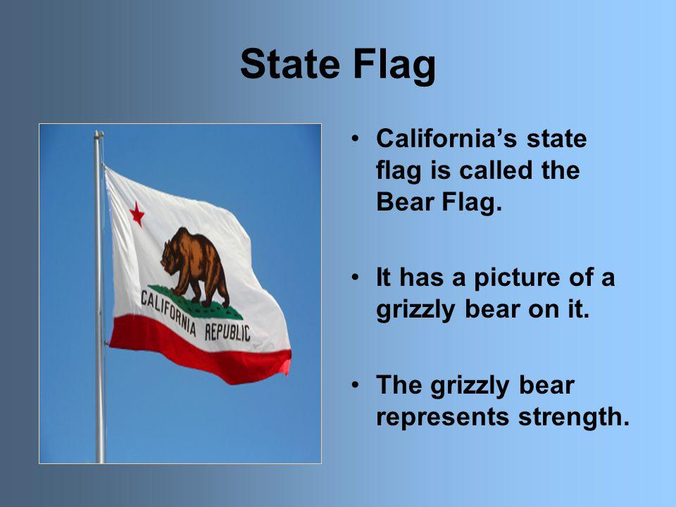 State Capital California's state capital is Sacramento.