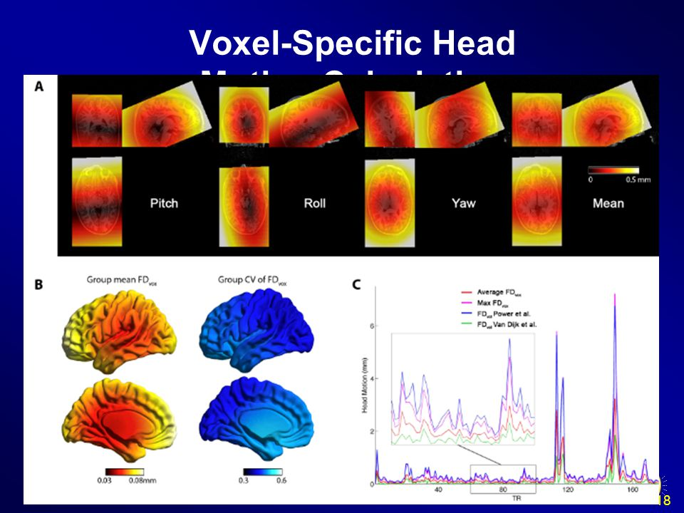 18 Voxel-Specific Head Motion Calculation {WorkingDir}\VoxelSpecificHeadMotion\Sub_xxx: HMvox_x_*.nii: voxel specific translation in x axis FDvox_*.nii: Frame-wise Displacement (relative to the previous time point) for each voxel TDvox_*.nii: Total Displacement (relative to the reference time point) for each voxel MeanFDvox.nii: temporal mean of FDvox for each voxel MeanTDvox.nii: temporal mean of TDvox for each voxel