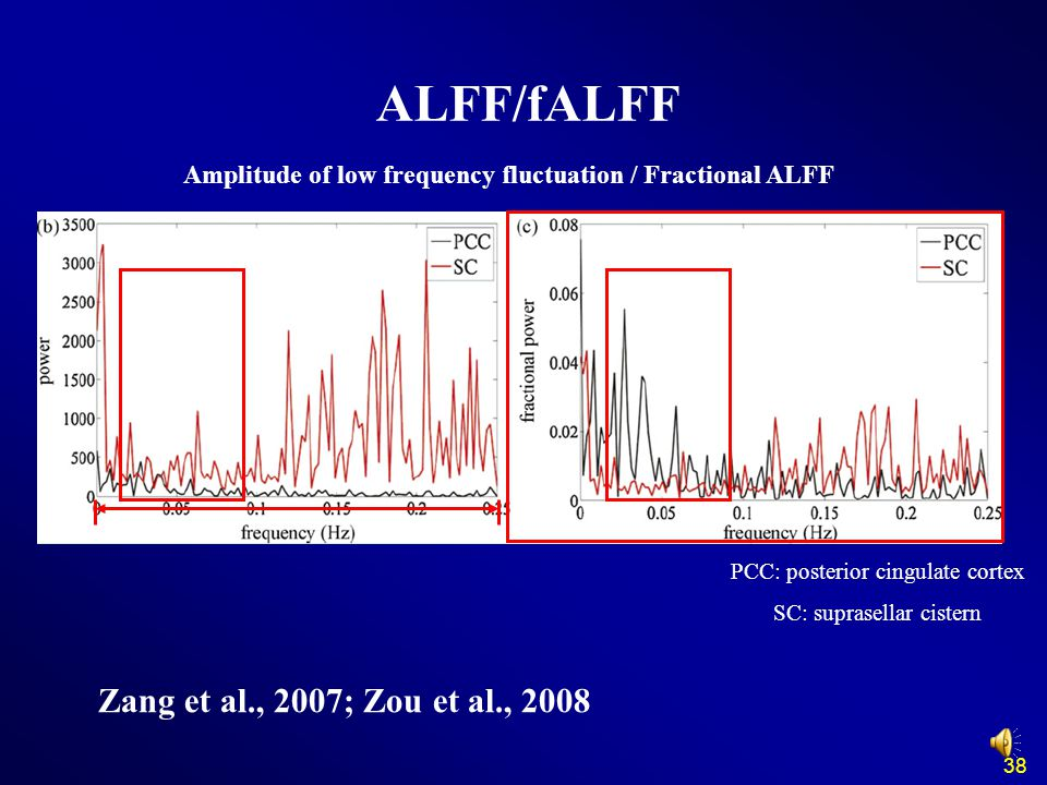 ALFF/fALFF Zang et al., 2007; Zou et al., 2008 PCC: posterior cingulate cortex SC: suprasellar cistern Amplitude of low frequency fluctuation / Fractional ALFF 38
