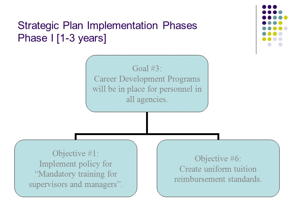 Strategic Plan Implementation Phases Phase I [1-3 years] Goal #3: Career Development Programs will be in place for personnel in all agencies.