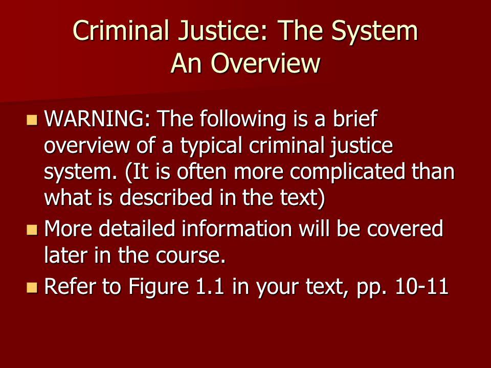 Criminal Justice: The System An Overview WARNING: The following is a brief overview of a typical criminal justice system. (It is often more complicate