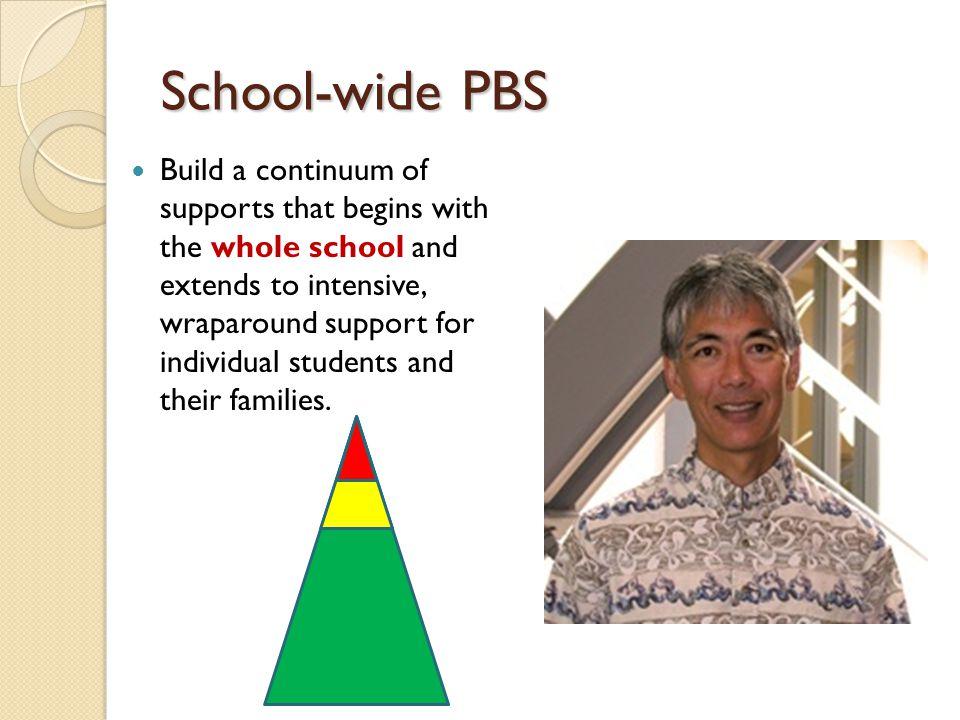What is School-wide Positive Behavior Support.