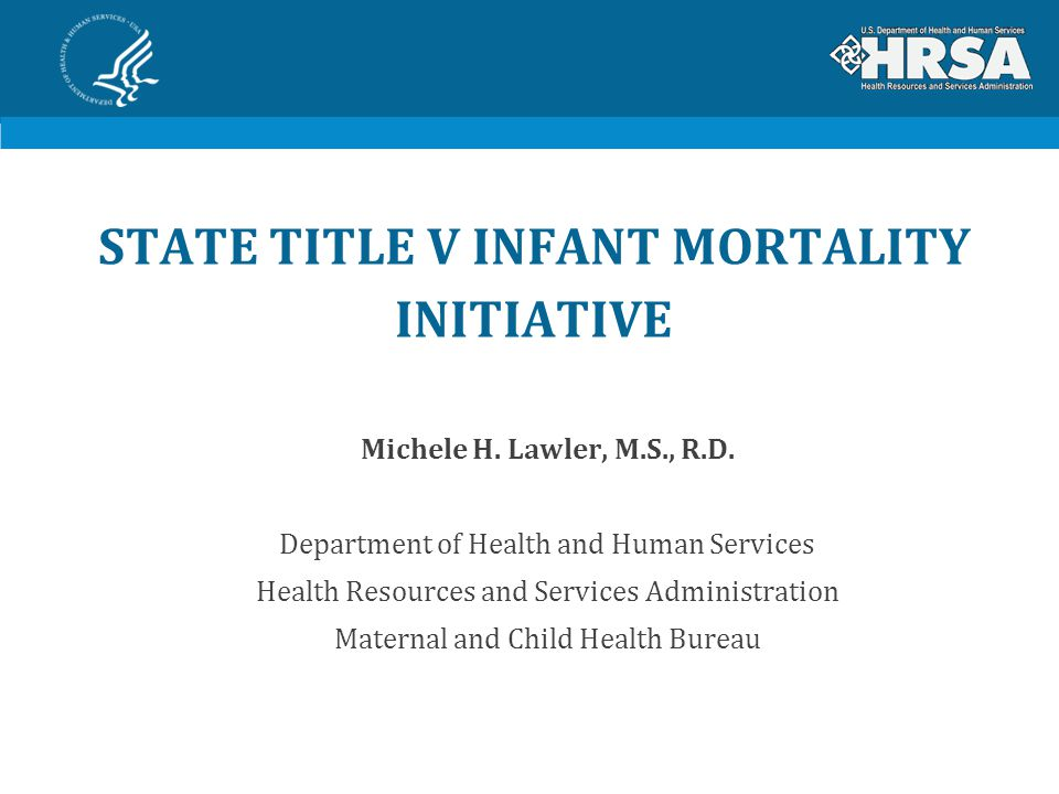 STATE TITLE V INFANT MORTALITY INITIATIVE Michele H.