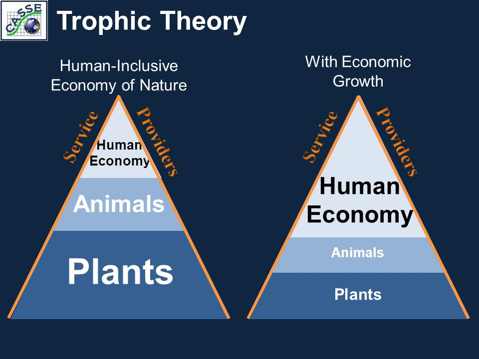 Trophic Theory Plants Animals Human Economy Human-Inclusive Economy of Nature Plants Human Economy With Economic Growth Animals