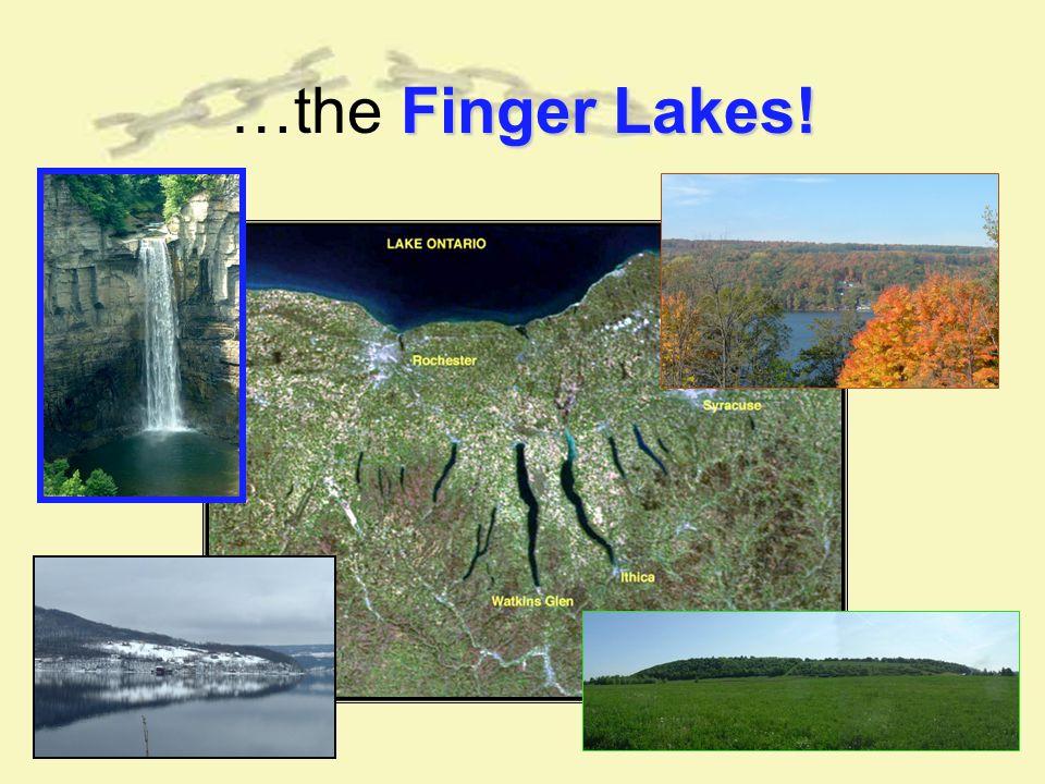 Finger Lakes! …the Finger Lakes!