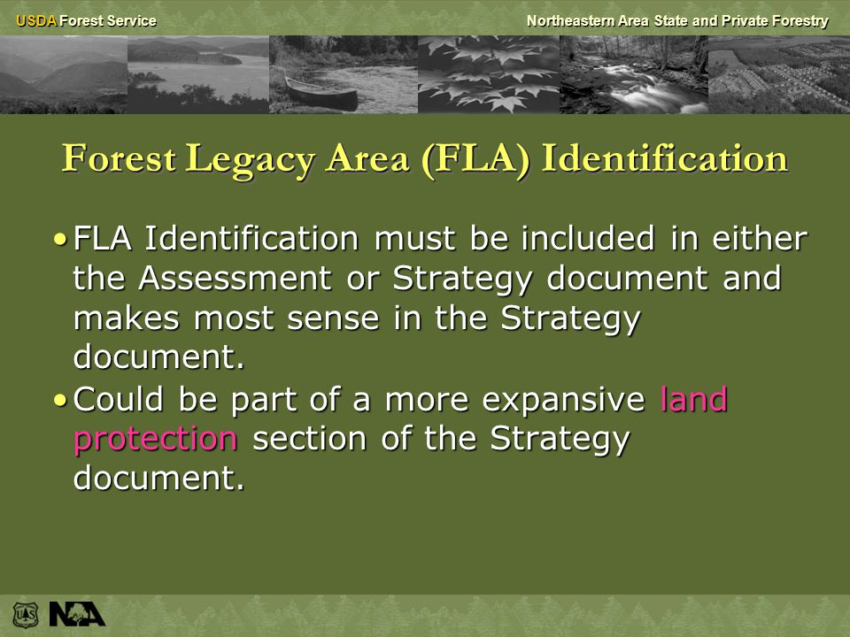 USDA Forest ServiceNortheastern Area State and Private Forestry Forest Legacy Area (FLA) Identification FLA Identification must be included in either the Assessment or Strategy document and makes most sense in the Strategy document.FLA Identification must be included in either the Assessment or Strategy document and makes most sense in the Strategy document.