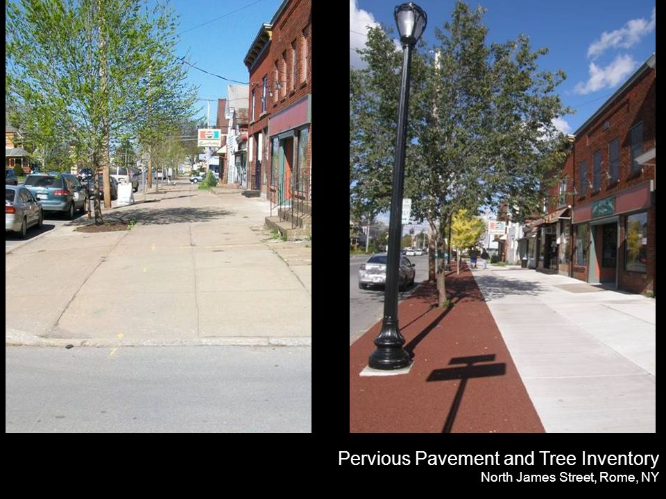 Pervious Pavement and Tree Inventory North James Street, Rome, NY