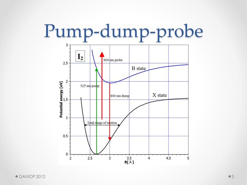Pump-dump-probe 3