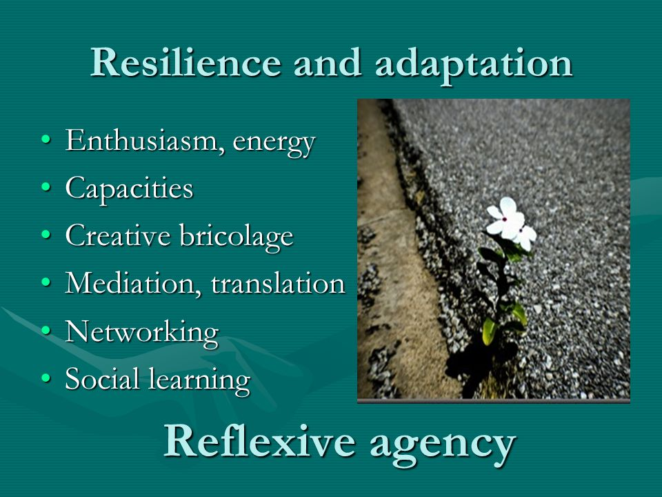 Resilience and adaptation Enthusiasm, energyEnthusiasm, energy CapacitiesCapacities Creative bricolageCreative bricolage Mediation, translationMediation, translation NetworkingNetworking Social learningSocial learning Reflexive agency