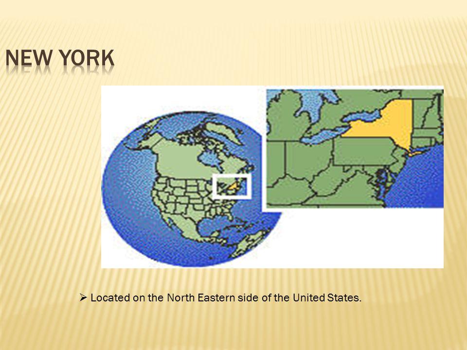Alternatives to Incarceration (ATI) programs vary by counties in New York.