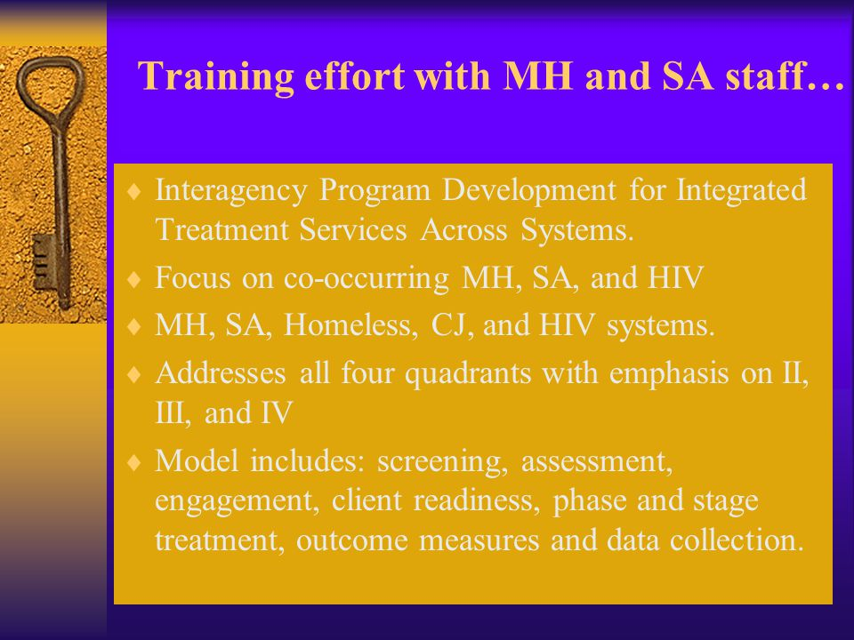 Training effort with MH and SA staff…  Interagency Program Development for Integrated Treatment Services Across Systems.